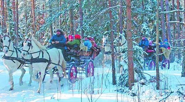 W gospodarstwach agroturystycznych w końcu zaczyna się sezon zimowyW Surażkowie konie zaprzęgane są do bryczek, śnieg nie jest więc niezbędny. Jednak, kiedy nie ma śniegu – nie ma też zainteresowania takimi przejażdżkami.
