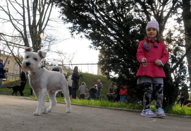 Do Ogrodu Saskiego przyszło dzisiaj około czterdziestu lublinian z psami. - Cały czas trwa też zbieranie podpisów pod sprzeciwem w sprawie regulaminu