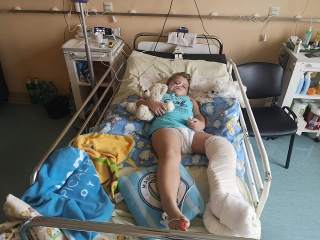 6-letni Dawidek z Sosnowca został potrącony przez samochód dostawczy. Trwa zbiórka na jego kosztowną rehabilitacje. Zobacz kolejne zdjęcia. Przesuń zdjęcia w prawo - kliknij strzałkę lub przycisk NASTĘPNE.