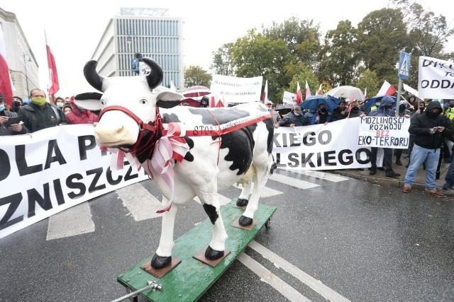Wielu rolników protestowało już w Warszawie, manifestacje odbędą się w całym kraju