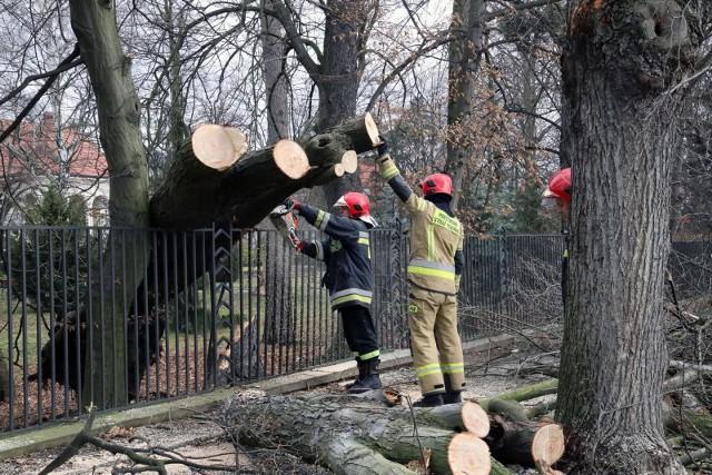 O silnym wietrze, który przechodzi nad Wielkopolską, już w sobotę informował Instytut Meteorologii i Gospodarki Wodnej.