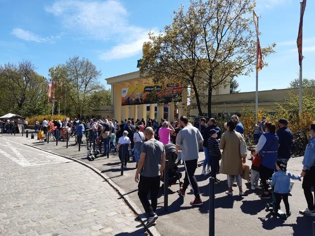 Niedzielna kolejka do zoo.