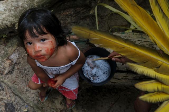 Rdzenna ludność leczy się na koronawirusa przyrządzając własne preparaty z ziół