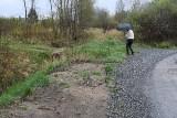 Ktoś może wpaść do wody! Niebezpieczne dojście do działek przy ulicy Wschodniej w Kielcach [ZDJĘCIA]