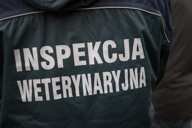 Minister rolnictwa zapowiedział dodatkowe etaty w inspekcji weterynaryjnej
