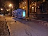 Nocny rajd ulicami Ełku. Jest nagranie zdemolowania przystanku i latarni miejskiej [ZDJĘCIA, WIDEO]