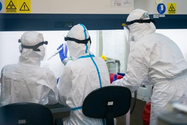 Badania laboratoryjne potwierdziły obecność koronawirusa u kolejnych siedmiu osób na terenie Wielkopolski.