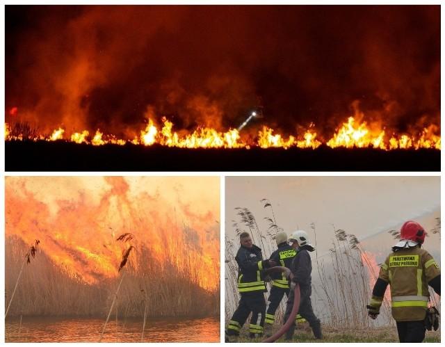 Trwa pożar w Biebrzańskim Parku Narodowym. Kolejny dzień strażacy walczą z żywiołem, który trawi ogromne przestrzenie bezcenne przyrodniczo terenów chronionych.