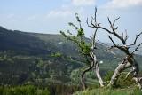 Pomysł na weekend lub urlop w czeskich Jesenikach. Gdzie warto pojechać na wycieczkę? [trasy, ceny, atrakcje turystyczne]