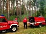 Na terenie gminy Cybinka grasuje podpalacz. Nadleśnictwo wyznacza 5 tys. złotych za pomoc w jego złapaniu