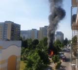 Pożar pergoli na Widzewie. Kłęby czarnego dymu i smród spalenizny na całym osiedlu