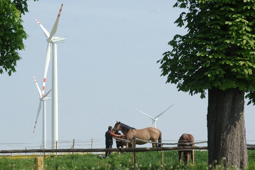 Na powstaniu wiatraków sporo zarobi gmina.