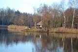 Spacer po parku Kuronia w Sosnowcu. Jesienią jest tutaj pięknie ZDJĘCIA