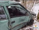 Niebezpiecznie na drogach w regionie. Opel uderzył w drzewo [zdjęcia]