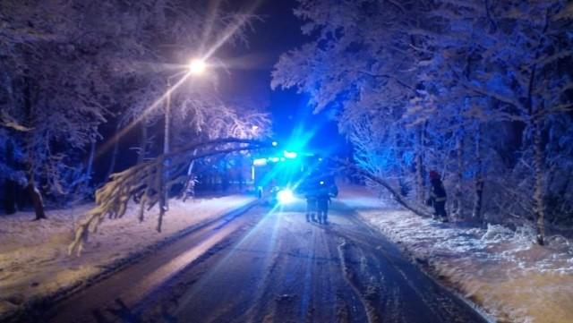 Ulica Leśna w Starachowicach. Przechylone nad jezdnią drzewo zagrażało bezpieczeństwu przejeżdżających tamtędy ludzi.