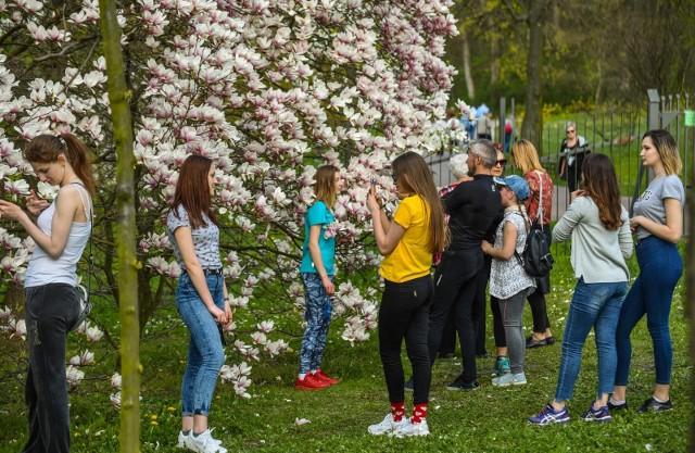 """W wielkanocną niedzielę skwery i miejskie parki zapełniły się tłumami bydgoszczan, którzy spacerując, maszerując z kijkami, biegając i jeżdżąc na rowerach, gubili świąteczne kalorie. Pogoda sprzyjała rekreacji. Zobaczcie zdjęcia z bydgoskiego Myślęcinka.""""Dojrzalsi"""". Nowy program skierowany do seniorów (odc. 1)"""