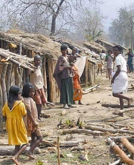 W Indiach wyrzucani z domów chrześcijanie budują prowizoryczne szałasy w dżungli.