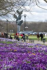 Pogoda w Szczecinie i nad morzem. Kiedy zacznie się ciepła wiosna? Długo będziemy czekać na ładną pogodę?