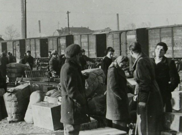 Po zakończeniu II wony światowej alianci w Poczdamie podjęli decyzję o wysiedleniu Niemców z Polski, Czech i Węgier.