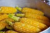 """Prezydent Duda podpisał ustawę. Dotyczy """"oznakowania bez GMO"""""""