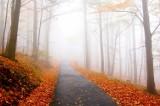 Pogoda w październiku 2018. Sprawdź prognozę na tegoroczną jesień w Polsce. Czy będzie ciepło?