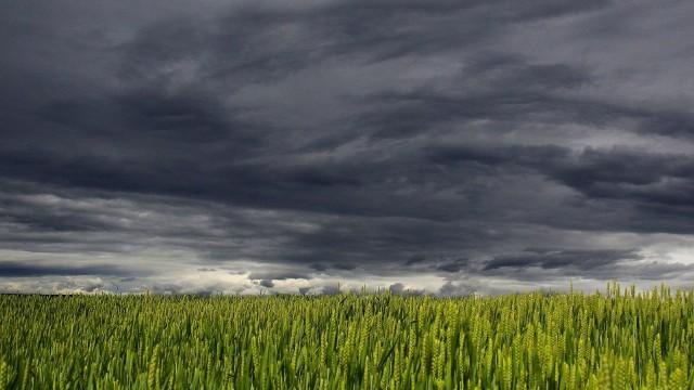 Dla powiatu strzelecko-drezdeneckiego wydano ostrzeżenie przed burzami