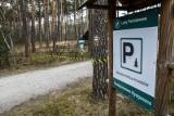 Obowiązuje zakaz wejścia do lasów w całym kraju. RPO mówi, że to niezgodne z prawem!
