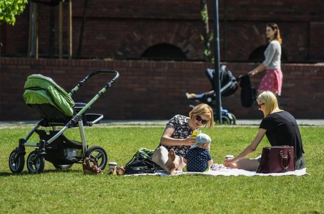 Rodzice co najmniej czwórki dzieci mogą liczyć na dodatkowe świadczenia. To tzw. emerytura matczyna zwana też jako program Mama 4 Plus. Może być przyznawany również ojcom. Kto może się ubiegać o świadczenie? Sprawdźcie szczegóły!CZYTAJ DALEJ NA KOLEJNYCH SLAJDACH --->
