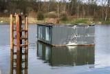 Dom na wodzie dryfuje po Odrze. Zerwała się lina [ZDJĘCIA]