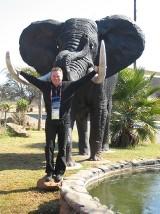 Mój mundial: Afryka bez mistrzostw