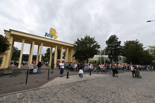 ZOO Wrocław czynne od jutra