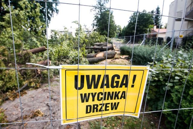 Duża wycinka drzew przy ulicy Towarnickiego w Rzeszowie. Drzewa trzeba było wyciąć pod budowę hali sportowej przy Zespole Szkół nr 1.