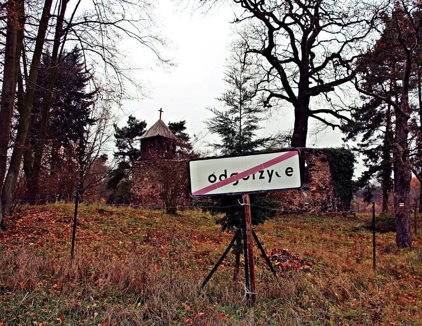 Ruiny kościółka we wsi Podgórzyce. Podobno w ważne święta,...