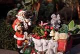 Gorzów. Święty Mikołaj... przypłynie Kłodawką. Można mu pomachać na trasie spływu