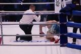 Cała walka Adamek - Molina. YouTube (zdjęcia)