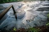 Las Olgi Tokarczuk ma powstać obok oczyszczalni ścieków i składowiska odpadów