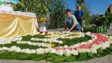 Boże Ciało 2021. Mieszkańcy Klucza, Olszowej, Zimnej Wódki i Zalesia ułożyli kwiatowe dywany