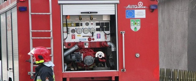 Z ogniem walczyli strażacy zawodowi i ochotnicy