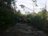 Burza nad woj. podlaskim i warmińsko-mazurskim. Tysiące osób bez prądu (zdjęcia)