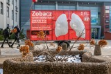 Sztuczne płuca stanęły w Bydgoszczy. Pokażą, jakim powietrzem oddychamy [zdjęcia]