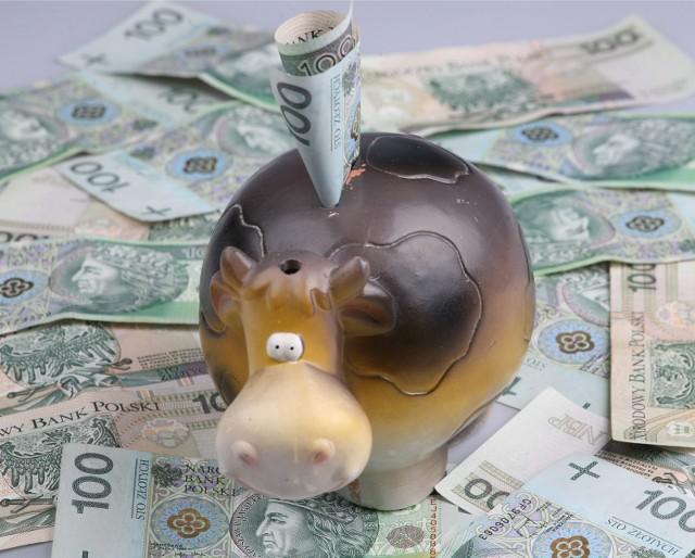 Najniższe oszczędności posiadają gospodarstwa co najmniej 5-osobowe – w prawie co czwartym z nich, wysokość odłożonych pieniędzy to równowartość pensji z 1 miesiąca.