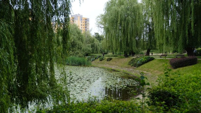 Park Róż w Chorzowie. Zobacz kolejne zdjęcia/plansze. Przesuwaj zdjęcia w prawo - naciśnij strzałkę lub przycisk NASTĘPNE