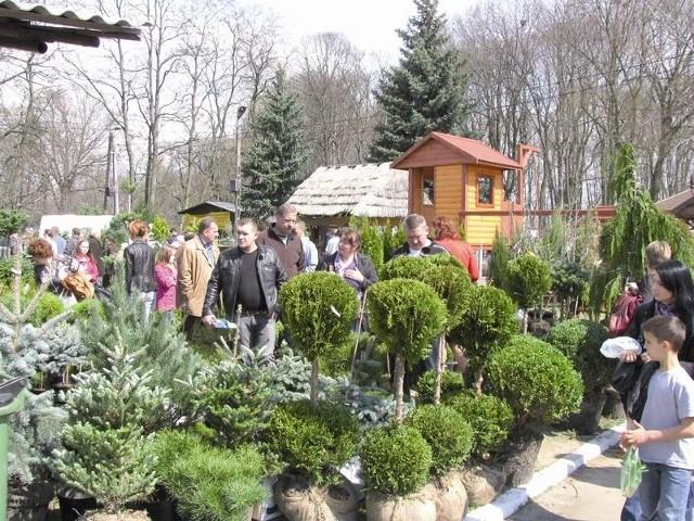 Odwiedzający imprezę w większości przyznawali, że nie przyjechali z zamiarem zakupu konkretnych roślin do ogrodu czy na balkon. Rozglądali się głównie za nowościami na rynku.
