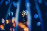 Choinka, bałwanek i świecące ozdoby wprowadzają mieszkańców w świąteczny nastrój [ZDJĘCIA]