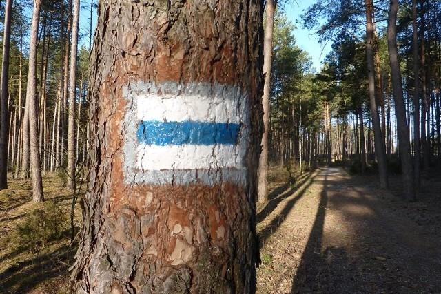 Urząd Miejski w Wasilkowie we współpracy z PTTK odnowił 18-kilometrowy odcinek szlaku, który biegnie przez gminę Wasilków. Na całej jego długości widnieje ponad 70 nowych oznaczeń kierunku.