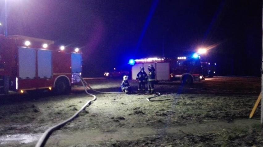 Kilka tysięcy indyków spłonęło w pożarze, który wybuchł w...