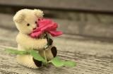 Osoby o tych znakach zodiaku czekać szczęście w miłości. Oni będą mieć szansę na zakochanie się!