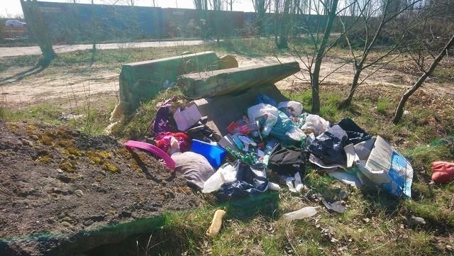 Mężczyzna wyrzucił śmieci w Poznaniu przy ul. Folwarcznej. Zapłacił 1150 zł kary.