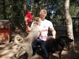 Wolontariusze Pekao S.A. ruszają na pomoc zwierzętom