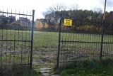 Zielona Góra. Nowy przetarg dotyczący terenu przy Szkole Podstawowej nr 18. Co z boiskiem do rugby?